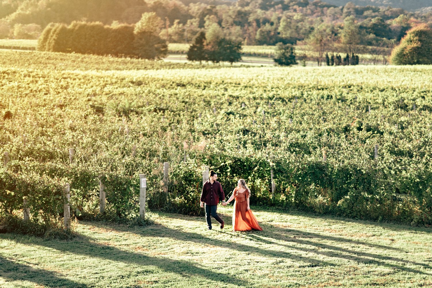 Breaux Vineyard Engagement Session Virginia